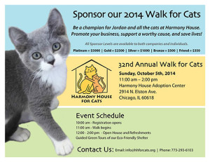 chicago walk for cats