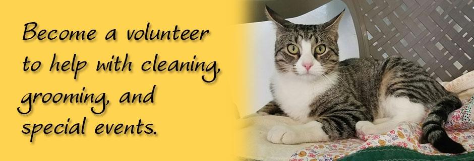 hhforcats org